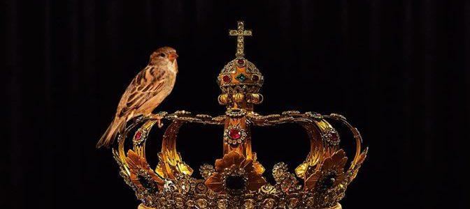 Las Aves en Teatro Lope de Vega